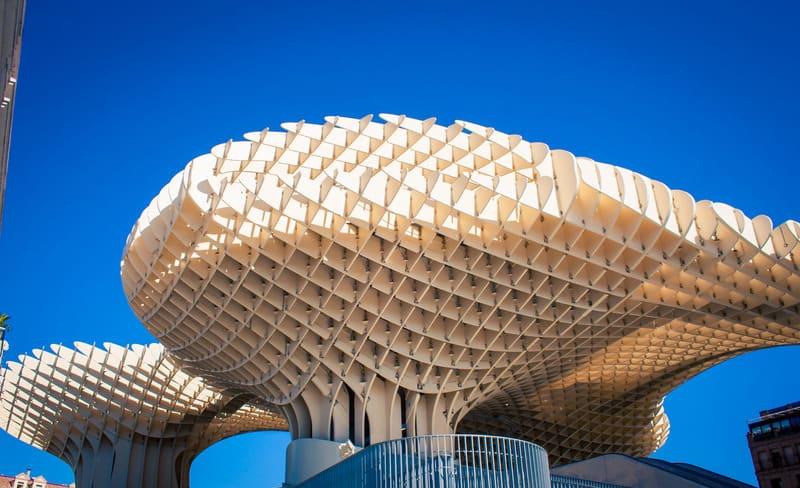 seville province mushroom, best neighborhoods in seville