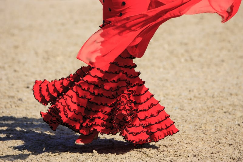 Things to do in Cadiz, Flamenco show