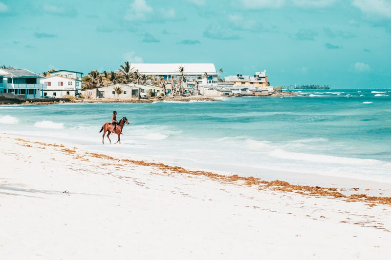 things to do in Tarifa, horse-riding in southern spain