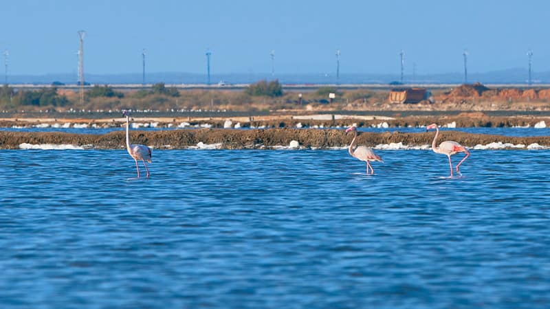 3 day itinerary Huelva, Odiel river