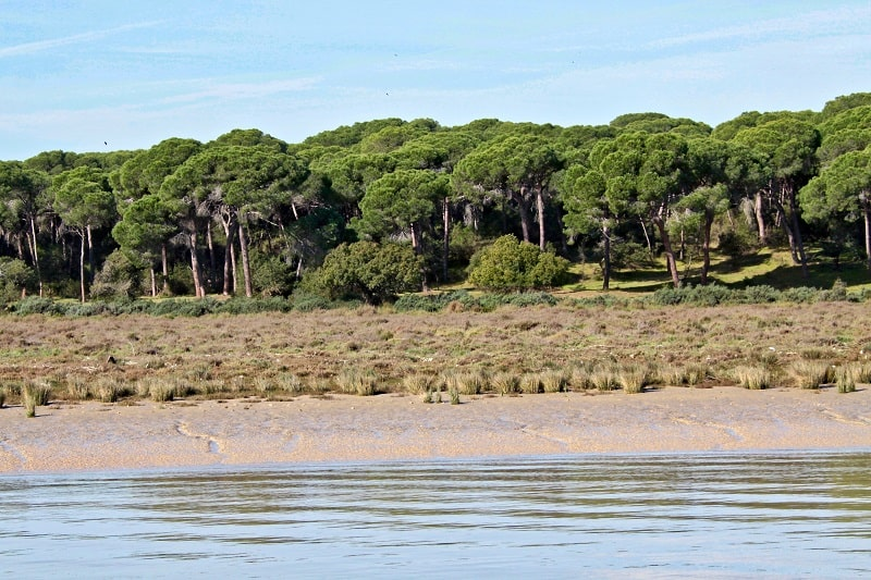 3 day itinerary Huelva, Doñana Natural Park