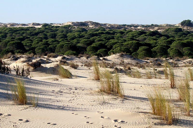 things to do in Tarifa, trekking in the natural parks