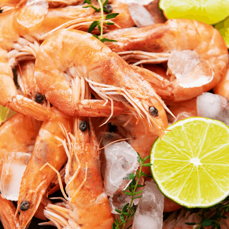 Mouthwatering shrimp dish, specific to Malaga Spain.