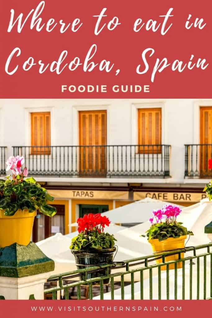 Are you wondering where to get the best food in Cordoba? This is the ultimate guide that takes you to the best restaurants in Cordoba in case you are wondering where to eat in Cordoba, Spain. There are plenty of places to eat in Cordoba but if there seems to be a top restaurant in Cordoba for every typical food from Cordoba. Thus find the best restaurants in Cordoba to eat paella, churros, or have brunch in Cordoba, Andalusia. #cordobafood #cordobaspain #cordobarestaurants #andalusiafood #cordoba