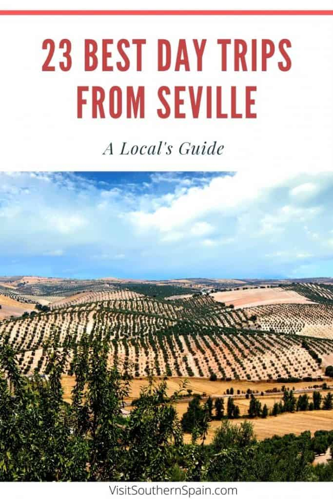 Are you wondering about the best day trips from Seville, Spain? A complete list with the best day tours from Seville in Southern Spain incl. must-visit places in Andalucia such as a day trip from Seville to Granada, Seville to Cordoba or to a beach resorts near Seville. This guide also comes with a selection of hidden, picturesque gems near Seville such as Moguer Jerez or Osuna. What is your favorite excursion from Seville? #seville #daytoursseville #daytripsseville #southernspain #andalucia
