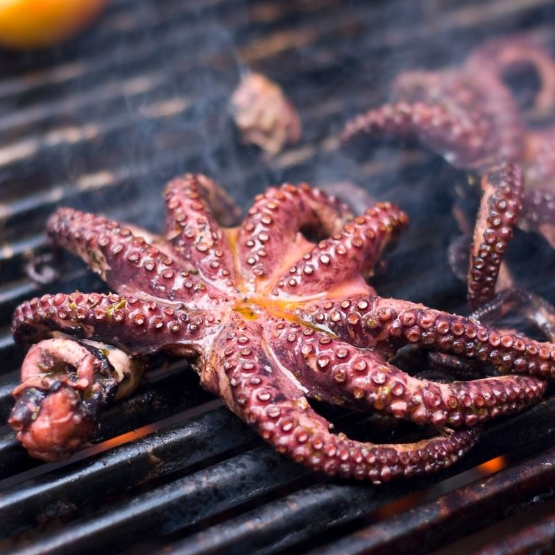 grilled octopus recipe