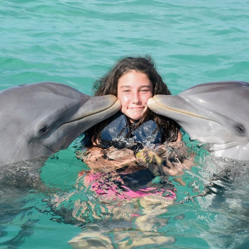 Best things to do in Malaga with kids - 3 day itinerary, Selwo Marina Delfinarium
