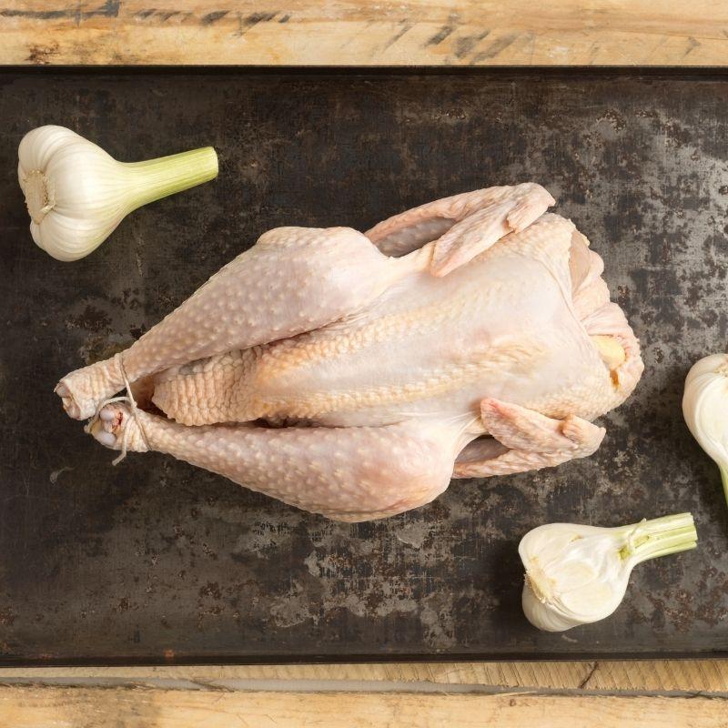 recipe for spanish chicken