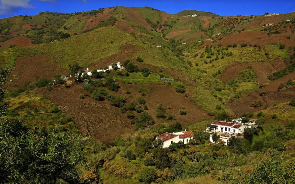 Lagar de Luisa Country House, best holiday villas in malaga