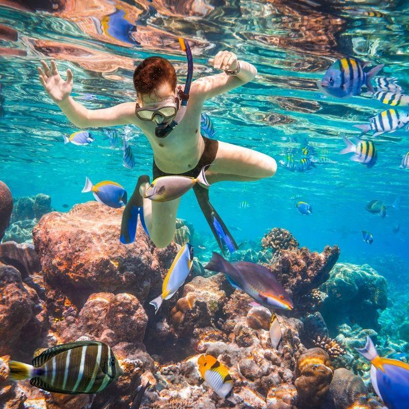 Best watersports in Malaga, Snorkeling